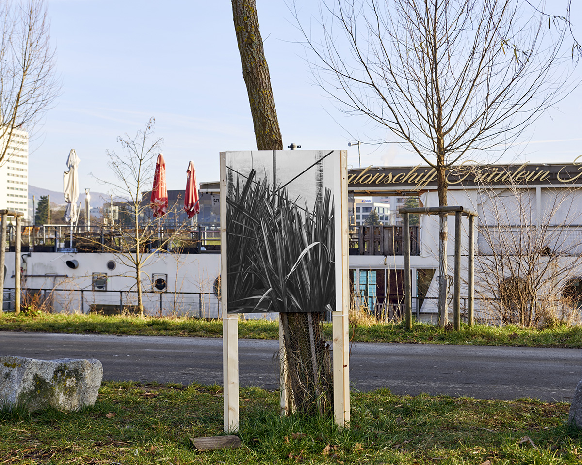Architekturforum Oberösterreich, Ausstellung, Linz, AFO, Offspace, Kunstverein, Pio Rahner, 2018