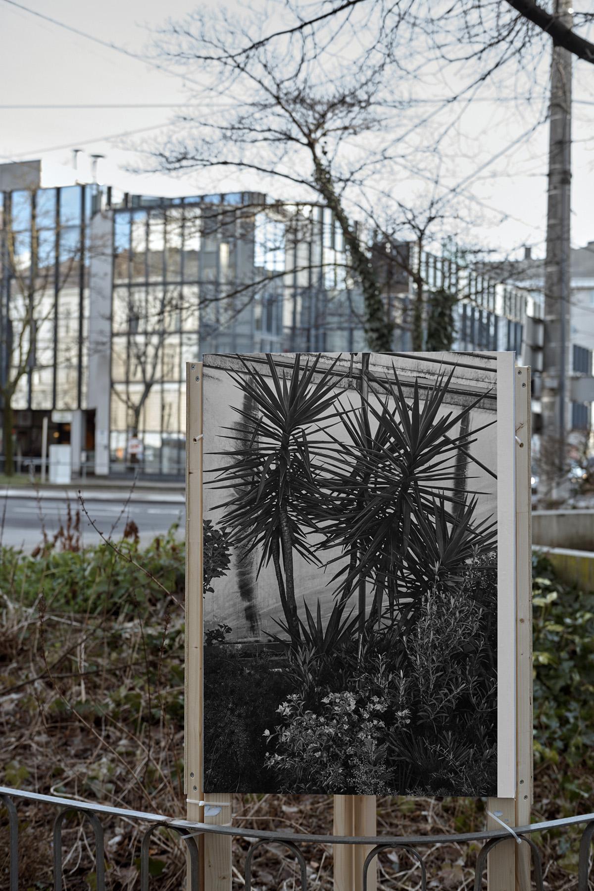 Architekturforum Oberösterreich, Ausstellung, Linz, AFO, Offspace, Kunstverein,Pio Rahner, 2018