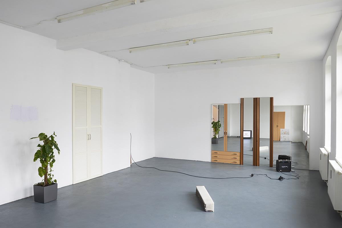 Pio Rahner, Rinne, Max Santo, Tobias Heine, Sebastian Moske, Torx, fak, münster, Kunstverein, Offspace